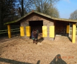 Post Protectors for Stables